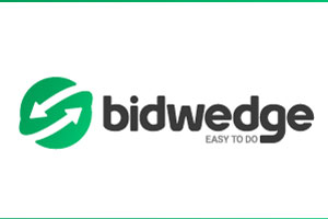 Case Study - Bidwedge.com